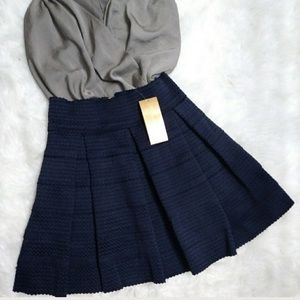 Francesca's Collections Dresses & Skirts - Francesca's Pleated Textured Navy Blue Skirt