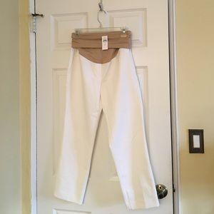LOFT Pants - Maternity Capri Pants