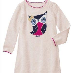 Gymboree Other - Gymboree Girls Knit Owl Dress