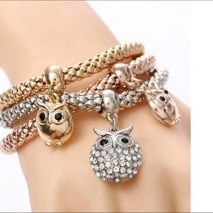 Jewelry - 🌹Last 1🌹Fashion OWL 3 Color Bracelet