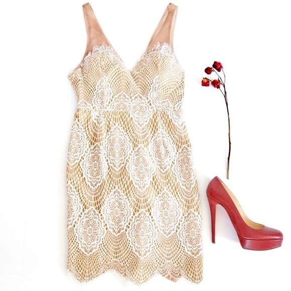 L'Atiste by Amy Dresses & Skirts - L'Atiste by Amy Nude White Lace Dress