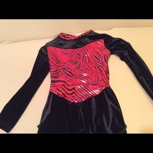 Other - SALE TODAY! Girls Figure skate dress