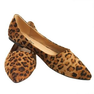 Tory K  Shoes - Tory K Leopard Flats, b-1350, Dark Brown