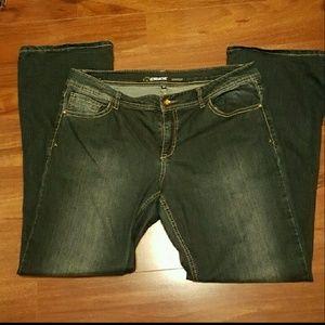 Jordache Denim - Jordache Jeans Bootcut Dark