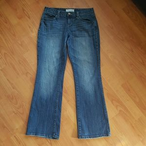 Maurices Denim - Maurices Taylor Boot Cut 3/4 short jeans