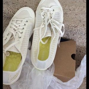 Treetorn Shoes - Treetorn sneakers