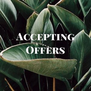 🌿 Accepting All Offers 🌿