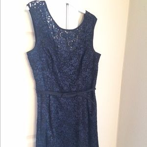 White House black market blue/black lace dress