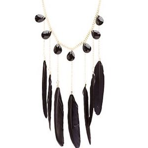 Nwot black feather necklace
