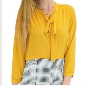 Relished Tops - Button down blouse
