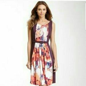 Eva Franco Dresses & Skirts - NWT - Eva Franco Thea Dress