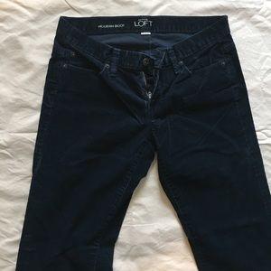Loft modern boot Corduroy pants