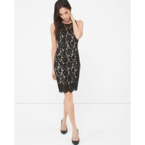 White House Black Market Lace Sheath Dress