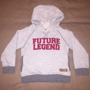 Carter's Other - Boys 24 month Carters hooded sweatshirt