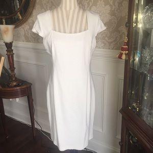 Cache dress...Size 14