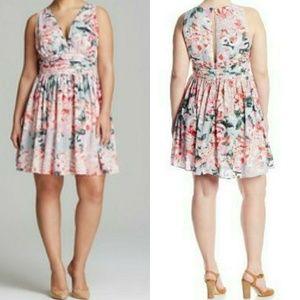 BB Dakota Dresses & Skirts - BB Dakota Plus Size 22 Gelsey Dress - NEW w/Tags