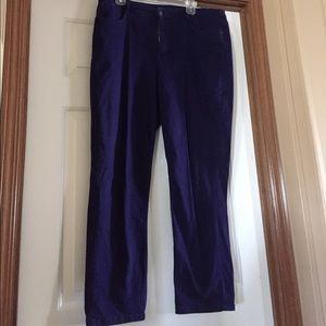 Royal Purple Bandolino Jeans