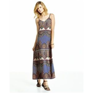 Greylin Dresses & Skirts - Greylin Charlotte tapestry print maxi dress