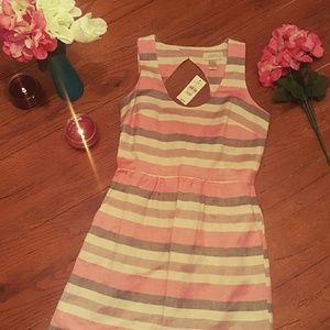 LOFT Dresses & Skirts - 💋New💋NWT Ann Taylor Loft Petites
