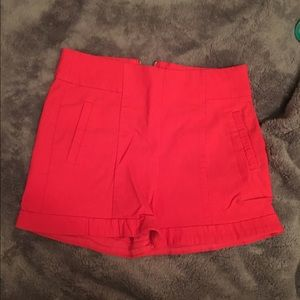 Papaya Pants - Super cute shorts