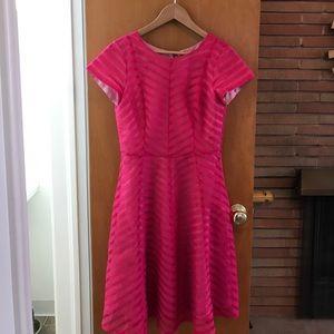 Shabby Apple Dresses & Skirts - Shabby Apple Dress Sz 8