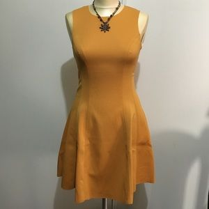 Alythea Dresses & Skirts - Flare and Fit dress