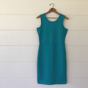 Metaphor Dresses & Skirts - Metaphor bodycon dress