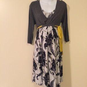 Liz Lange Dresses & Skirts - Maternity/nursing dress size large by Liz Lange