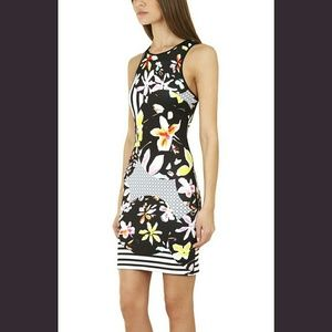 Clover Canyon Dresses & Skirts - NWT, Clover Canyon Floral Discs Black Dress