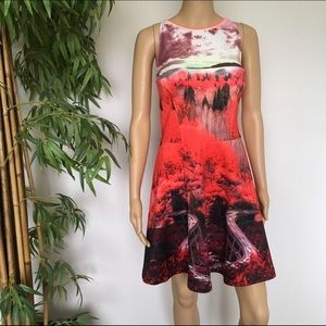Ted Baker City Bridge Print Dress