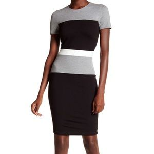 French Connection Dresses & Skirts - French Connection Lula Stretch Short Sleeve Dress