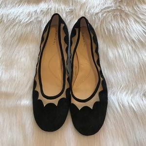 Tahari Shoes - Black Suede Flats