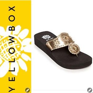 Yellow Box Shoes - NWOT Yellow Box Foteini Gold Flip Flops