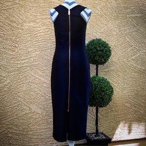 Ted Baker London Dresses & Skirts - Ted Baker London Erskine Snake Jacquard Dress