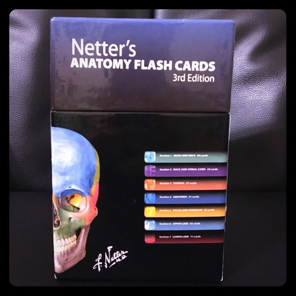 Netters Anatomy Flash Cards | Poshmark
