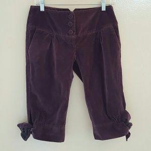 Cartonnier velvet pants