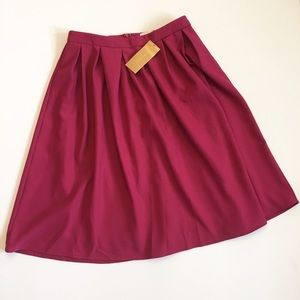 Francesca's Collections Dresses & Skirts - NWT - Pleated skirt from Francesca's