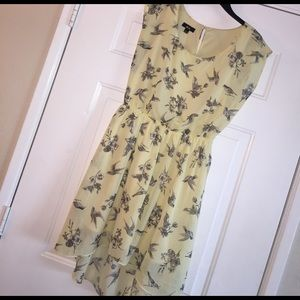 BCX Dresses & Skirts - Hi lo chiffon yellow and black bird toile sz L