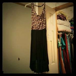 Edgehill Collection Dresses & Skirts - Leopard and black dress