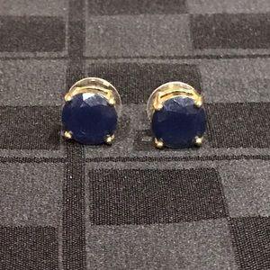 Navy Stud Earrings