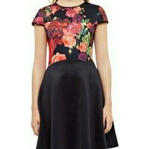 Ted Baker Juxtapose Rose Dress 8