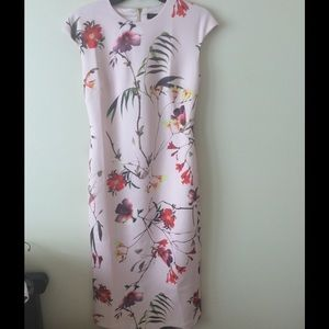 NWOT Ted Baker Dress