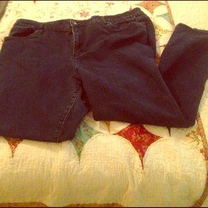 Avenue Denim - Avenue Jeans