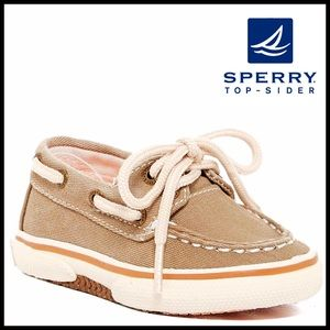 Sperry Top-Sider Other - SPERRY Moccasin BOAT SHOES
