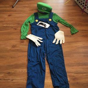 Nintendo Other - Luigi costume