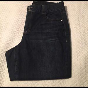 Lane Bryant Denim - Skinny jeans dark denim short worn 2X