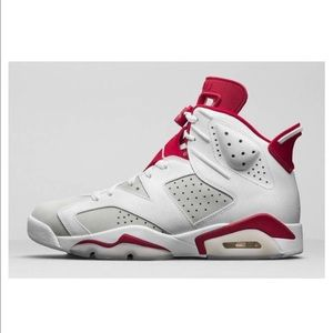 Jordan Other - Air Jordan 6 Alternate 2017