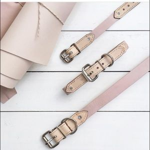 Accessories - BearyTail matching pink collar and bracelet