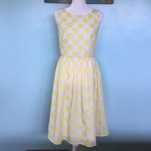 NWT Beautiful Loft Polka Dot Dress - 10