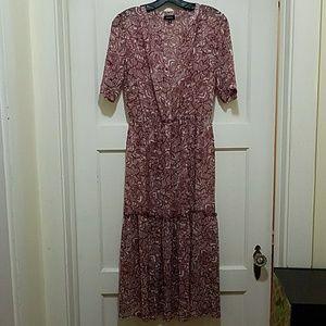 Beautiful Semi Sheer Maxi Dress